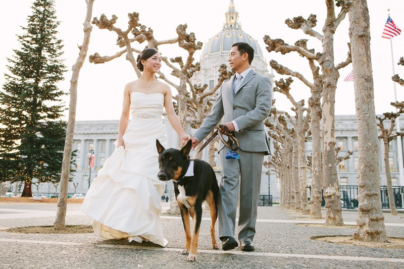 San Francisco City Hall wedding. Bride and groom walking with their dog.