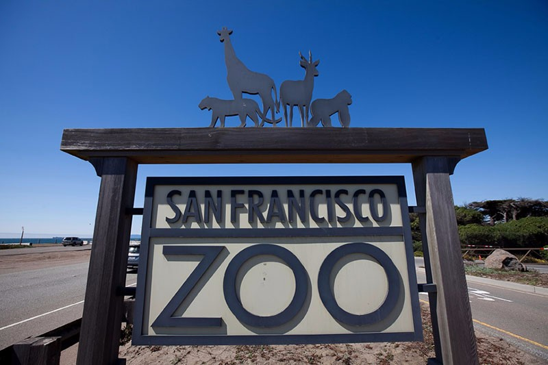 san-francisco-zoo-wedding-0008