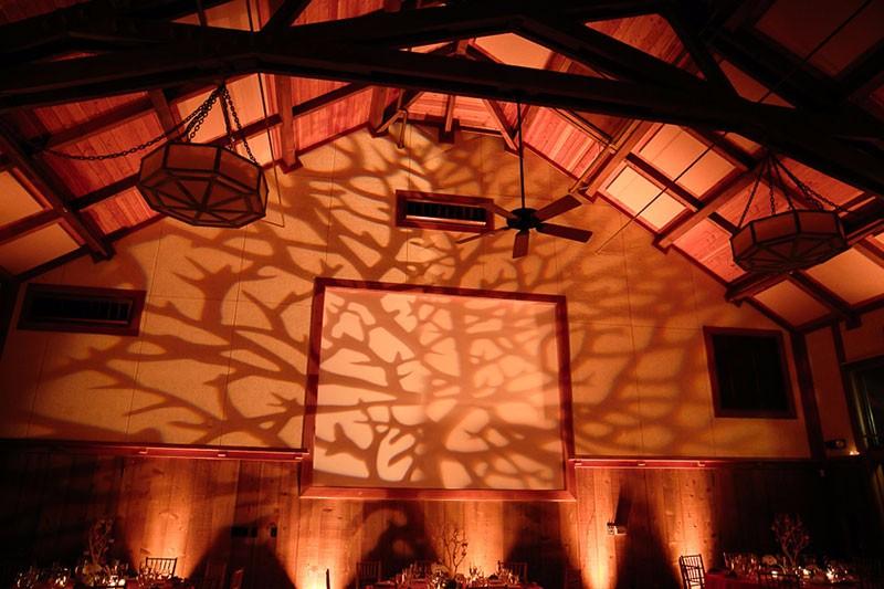 san-francisco-zoo-wedding-0023